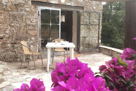 Country House in Tuscany - Le Mucche