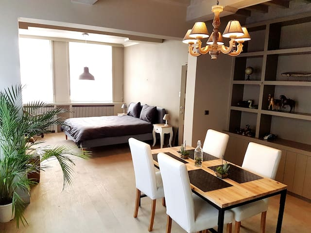 Luxurious apartment on top location - Brugge - Flat