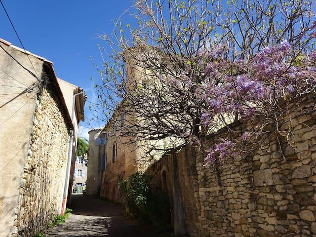 Appartement indépendant dans château - Saint-Étienne-les-Orgues - Appartement