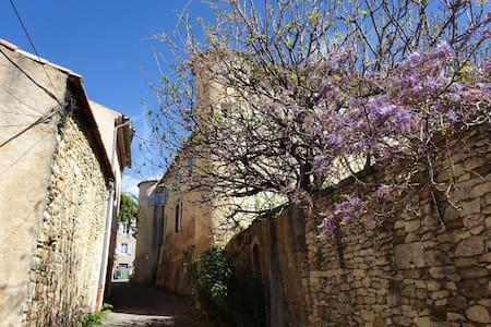 Appartement indépendant dans château - Saint-Étienne-les-Orgues - Huoneisto