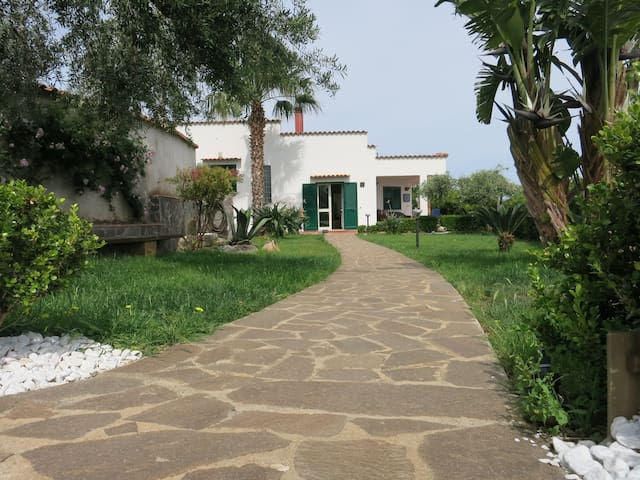 Villa of Olives, special offer 06/08 to 23/08 - Trabia - Dom