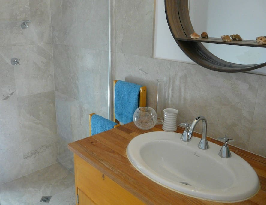 The Bathroom (incl. basin, shower, toilet, wardrobe).