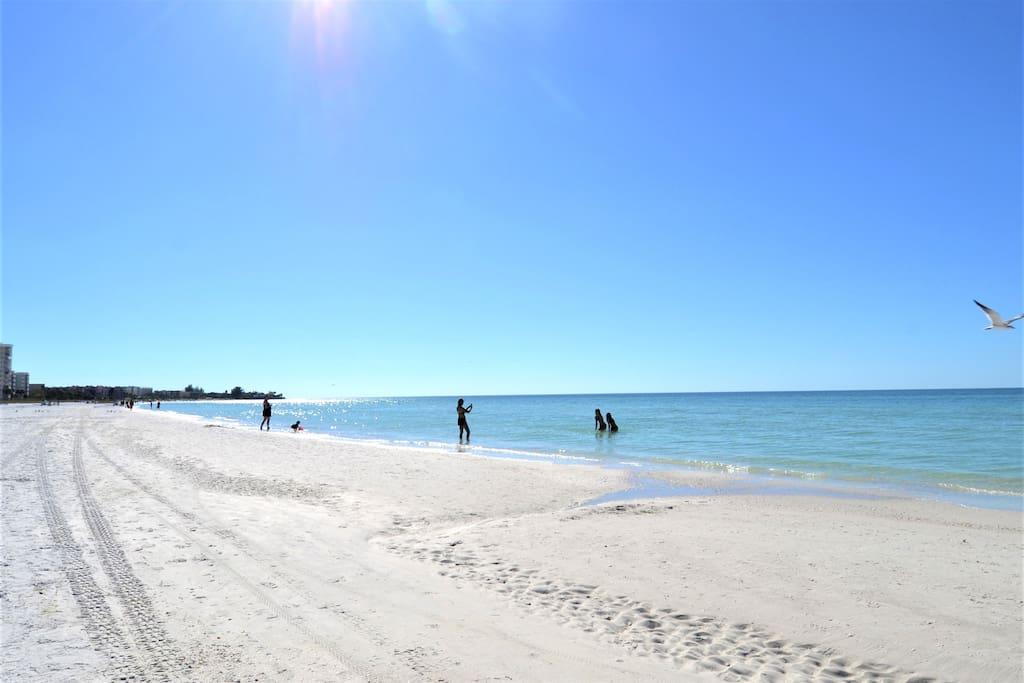 #1 Beach in US - 8 steps to sand path