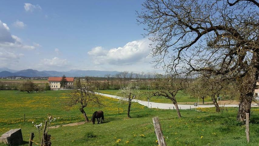 Cosy farm-home, view on Alps & amazing nature - Olševek - Apartemen