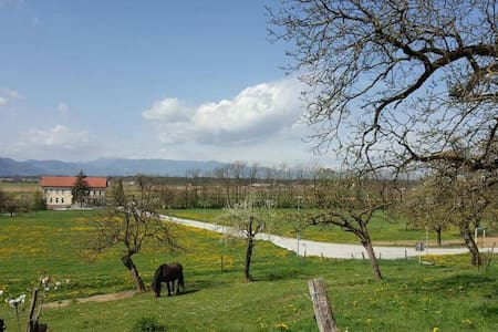 Cosy farm-home, view on Alps & amazing nature - Olševek - Lägenhet