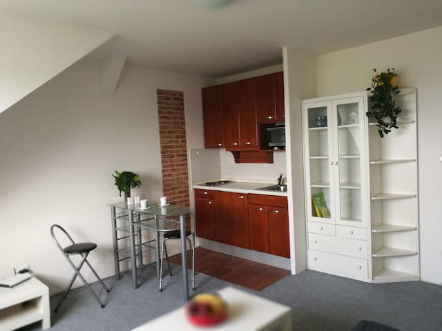 "Cosy Apartment ""Mont Blanc"", nearby city center"