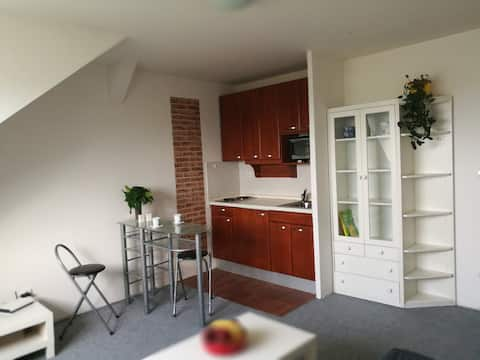 """Cosy Apartment """"Mont Blanc"""", nearby city center"""