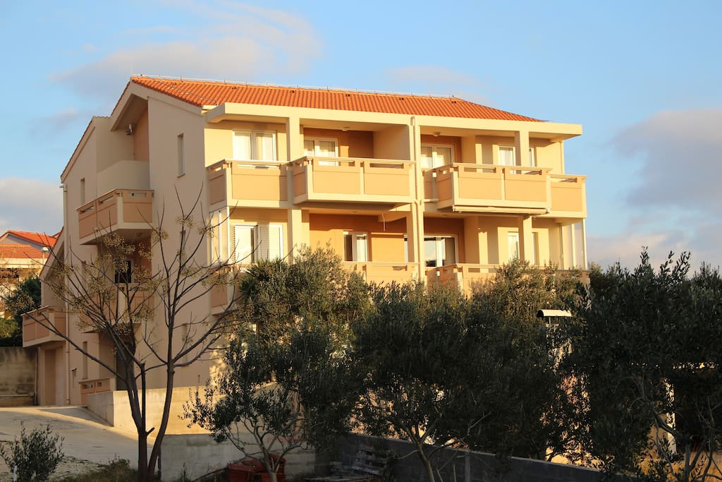 Exterior of the building surrounded by beautiful olive trees.