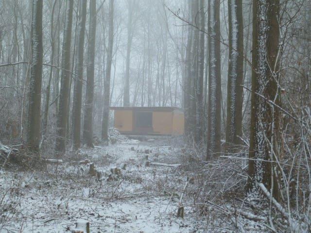 Cabane dans les bois - Fernelmont - Alojamento na natureza