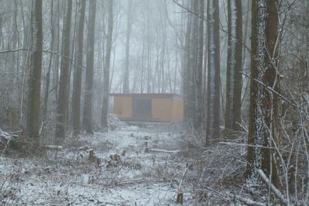 Cabane dans les bois - Fernelmont - Doğa içinde pansiyon
