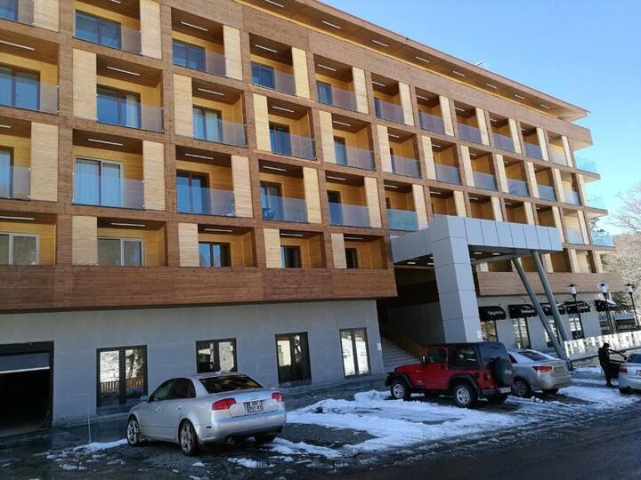 Apartment InThe Valley Bakuriani