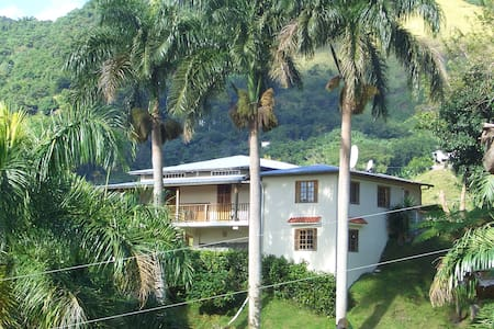 Casa Campo Jayuya, Mountain Retreat - Jayuya - Casa
