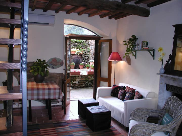 Il Rifugio B&B in the Olive Covered Hills of Lucca