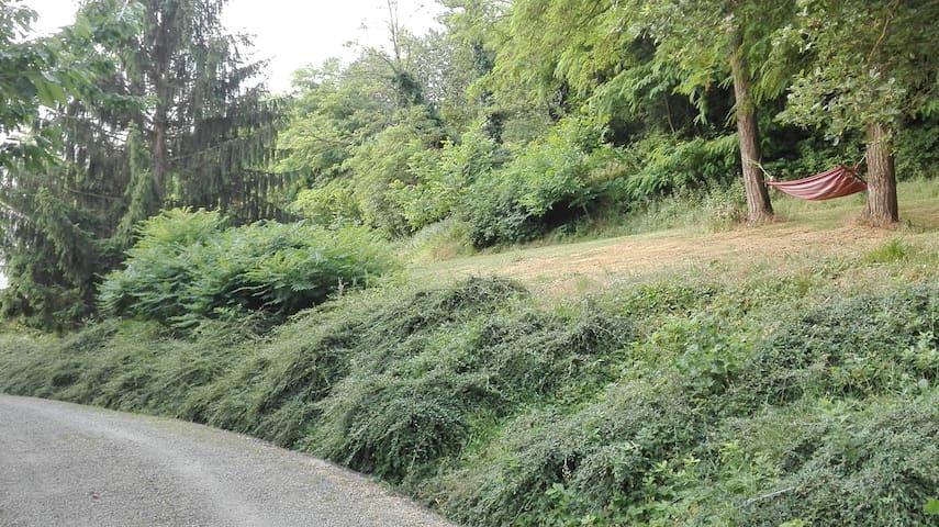 Panoramico alloggio in collina (CIR 00600100012)