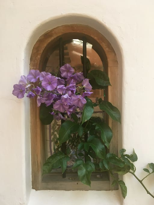 Entrance window october 2017. Welcome this autumn and winter, beautiful time to visit!.