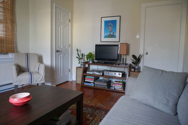 Charming Downtown Charlottesville Apartment - Charlottesville - Lejlighed
