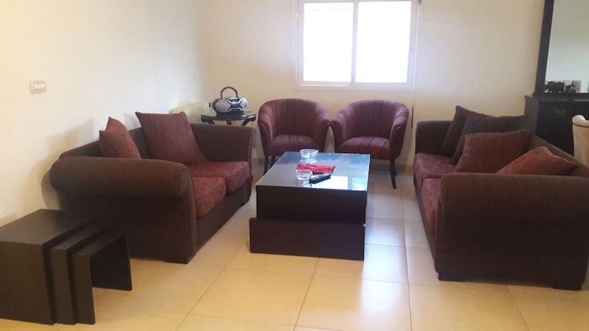 Newly furnished appartment in a comfortable area
