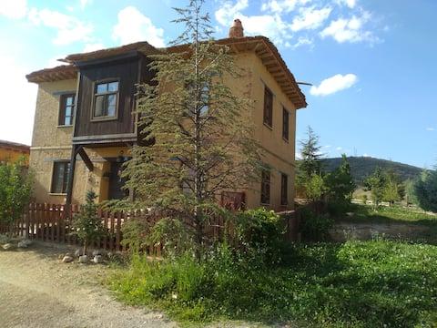 Hüyük Konya Sonsuz Şükran Köyü  Kerpiç Bahçeli Ev