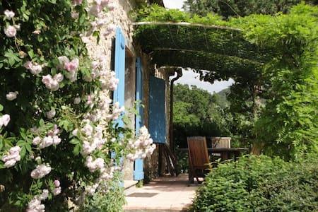 Gite de charme 3 étoiles près de Sisteron - Sigoyer - 自然小屋