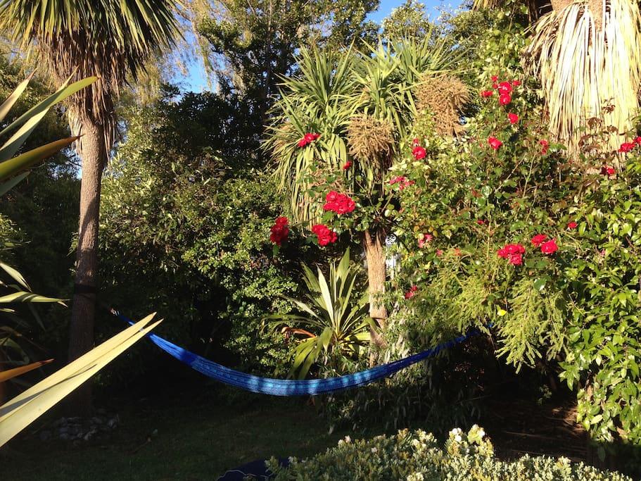 the hammock on the island across the stream in the garden
