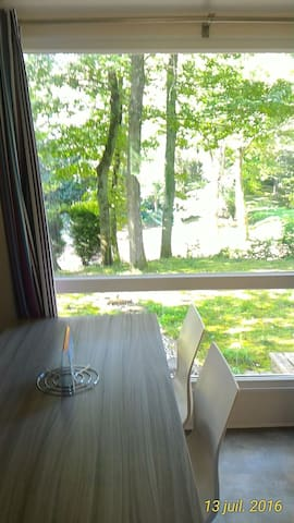 home in the countryside but quick access to Paris - Saint-Chéron - Apartamento