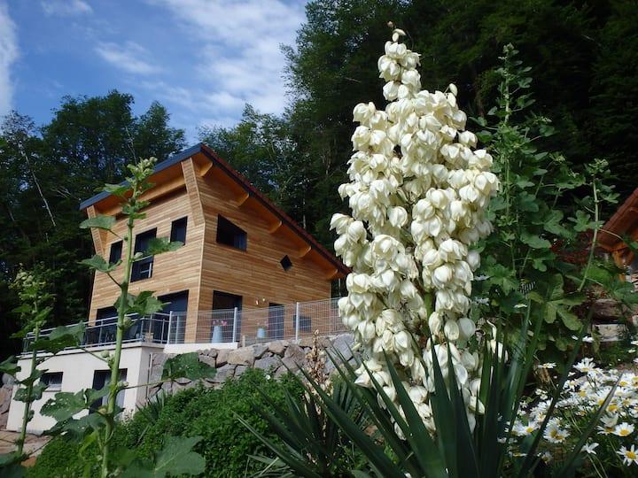 Chalet neuf 4 étoiles avec SPA privatif Vosges