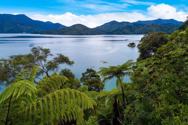 Wahi O Te Aroha - Island Point Bay, Kenepuru Sound