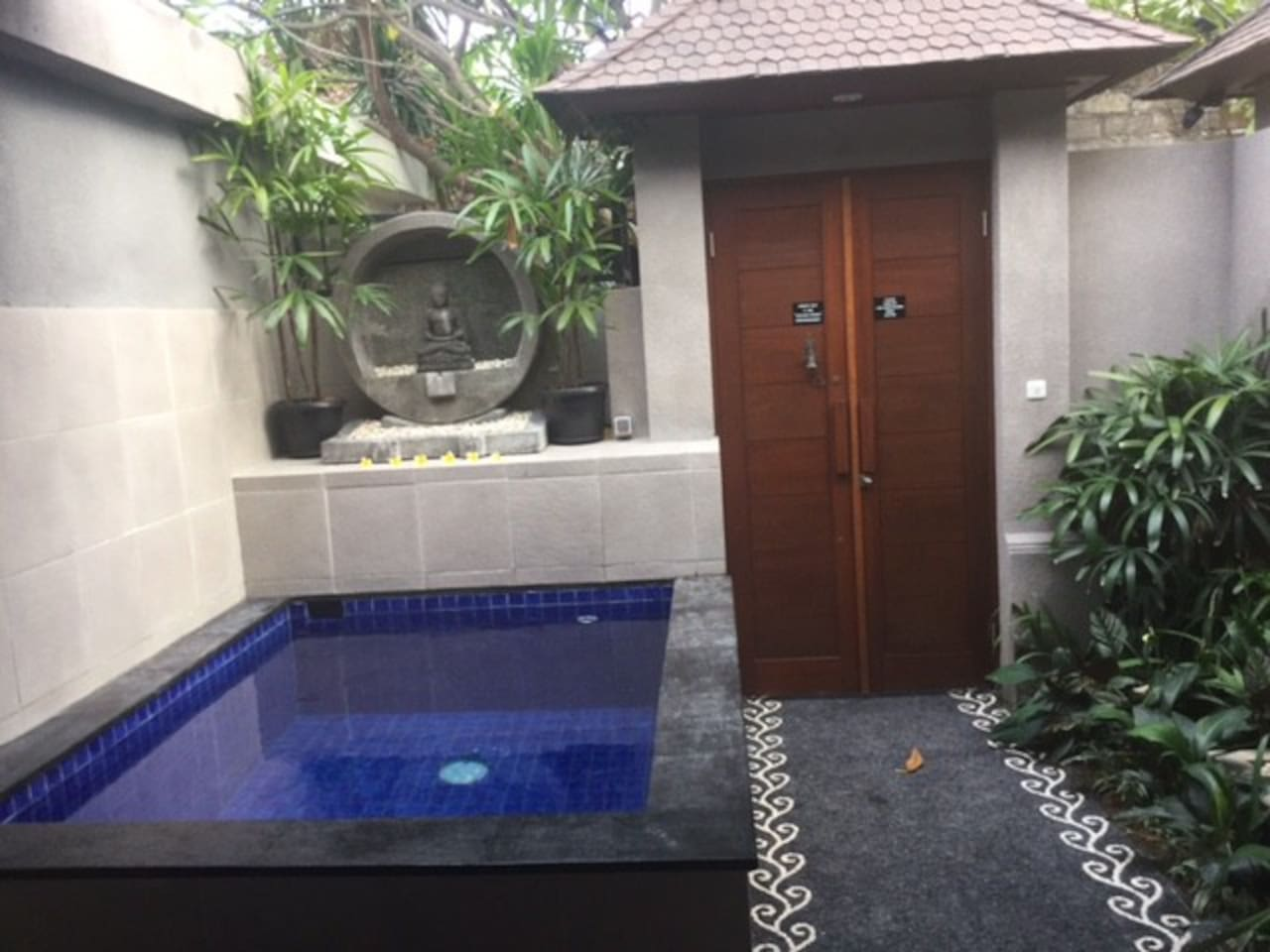 Plunge Pool and Garden area