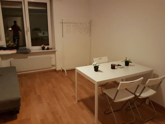 Big room for 2, 4min to Airport,6min to city centr - Zürich - Appartement