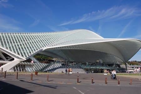 Le Jardin botanique - Liège - Huoneisto