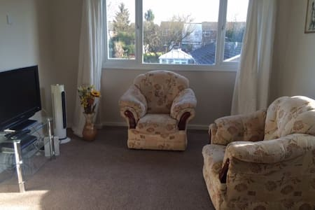 Cosy Flat, Superb Entertainment, Free Parking. - Stevenage - Leilighet