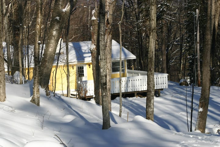 Killington: Cozy Private Home, Central Location