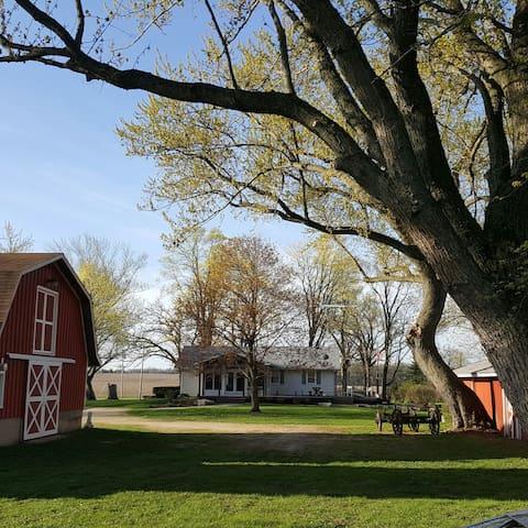 Beautiful Home on 5 Acres - Delavan - Casa