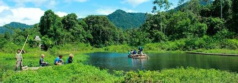 Amazon  Manu- cusco  - Tambopata