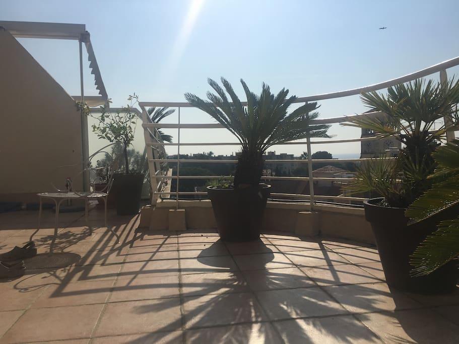 Grand toit terrasse