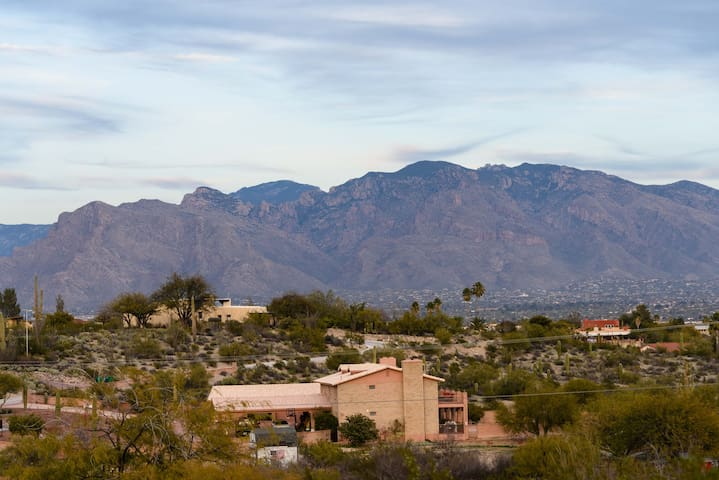 View of Santa Catalina mountains from the property