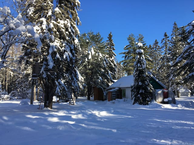 "Chalet ""Cabane canadienne"" 40 min. from Old Quebec - Fossambault-sur-le-Lac - Chalet"
