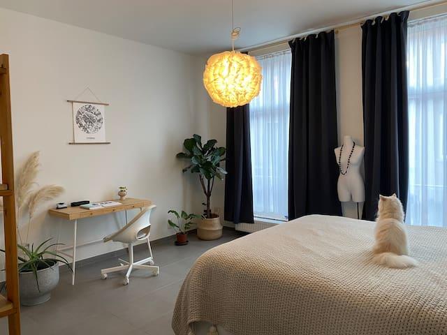 Chambre et bureau (le chat ne sera pas présent ^^)