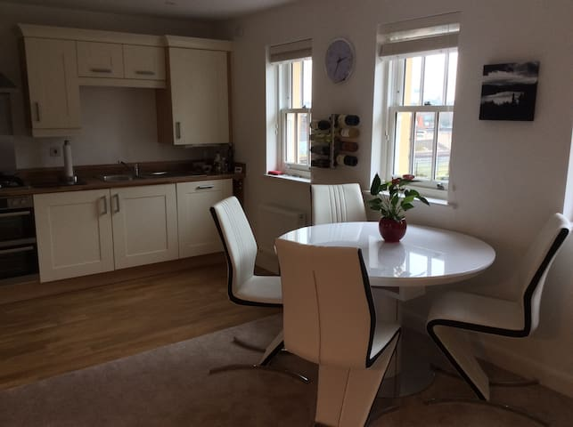 Riverside city centre apartment - Shrewsbury