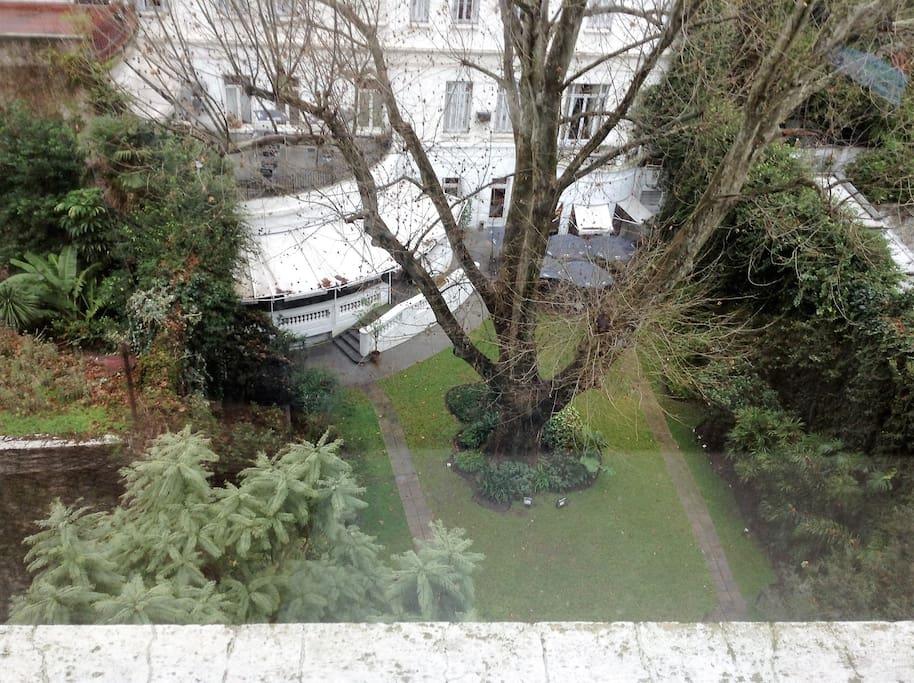 Jardín desde el ventanal. Bellísima vista!