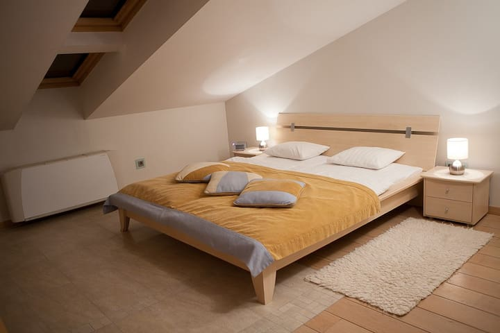 Mansard room with roof windows