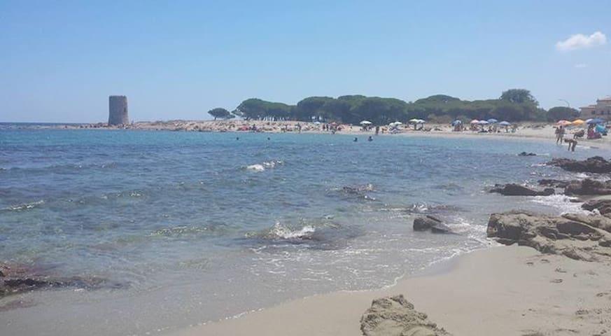 Casa vacanze Sardegna-Torpe' (Posada-La Caletta)