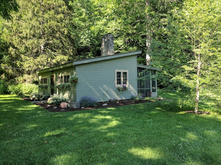 Quiet cabin on 60 secluded acres