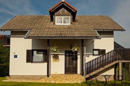 2apt house with big garden - Selište Drežničko