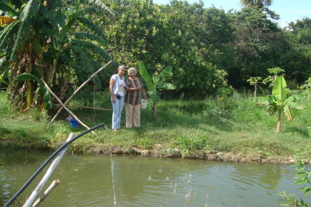 lagunas de cría de peces