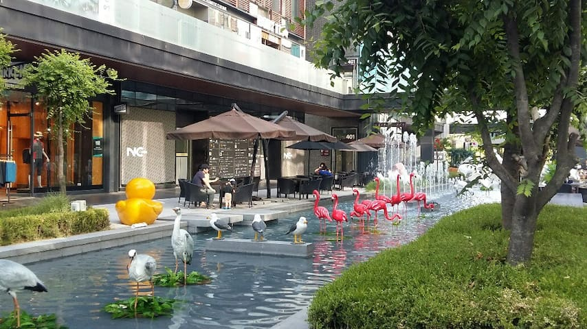 (assemblesuit) Songdo International City:CanalWalk