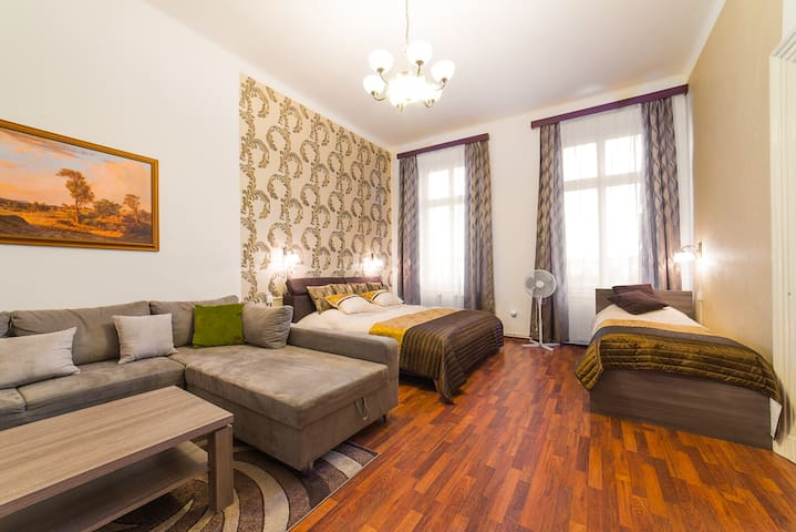 1st bedroom: One part of the large room is used as a living room with sofa (which can be convert into a 120 cm wide double bed) and a satellite TV (800 channels) and second part of the room like 1st bedroom with double bed and single bed.