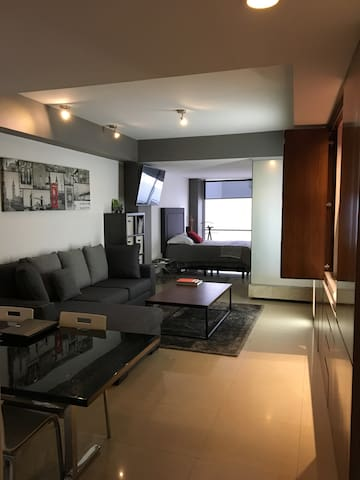 Wonderful Loft with terrace in Polanco - Ciudad de México - Loft-asunto