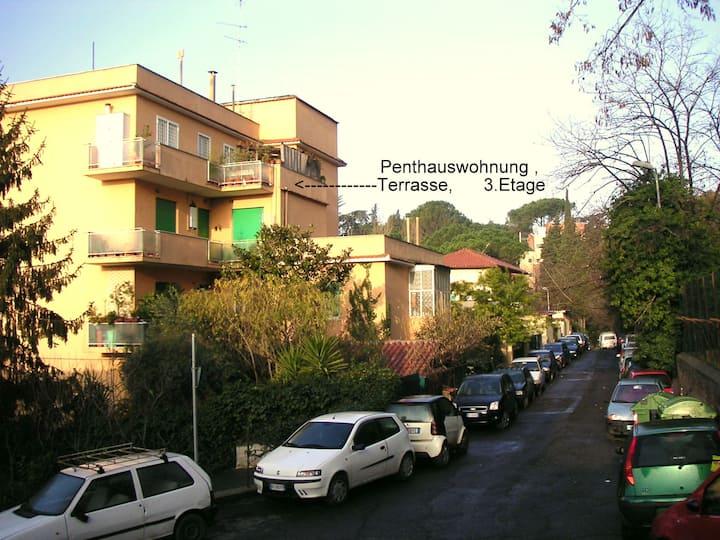 2 Zimmer Penthauswohnung 50qm, große Terrasse