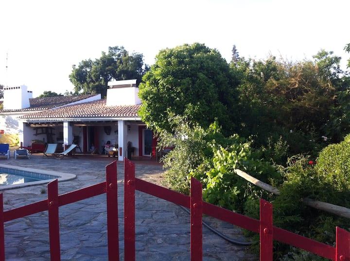 Quinta do Lameirão da Horta
